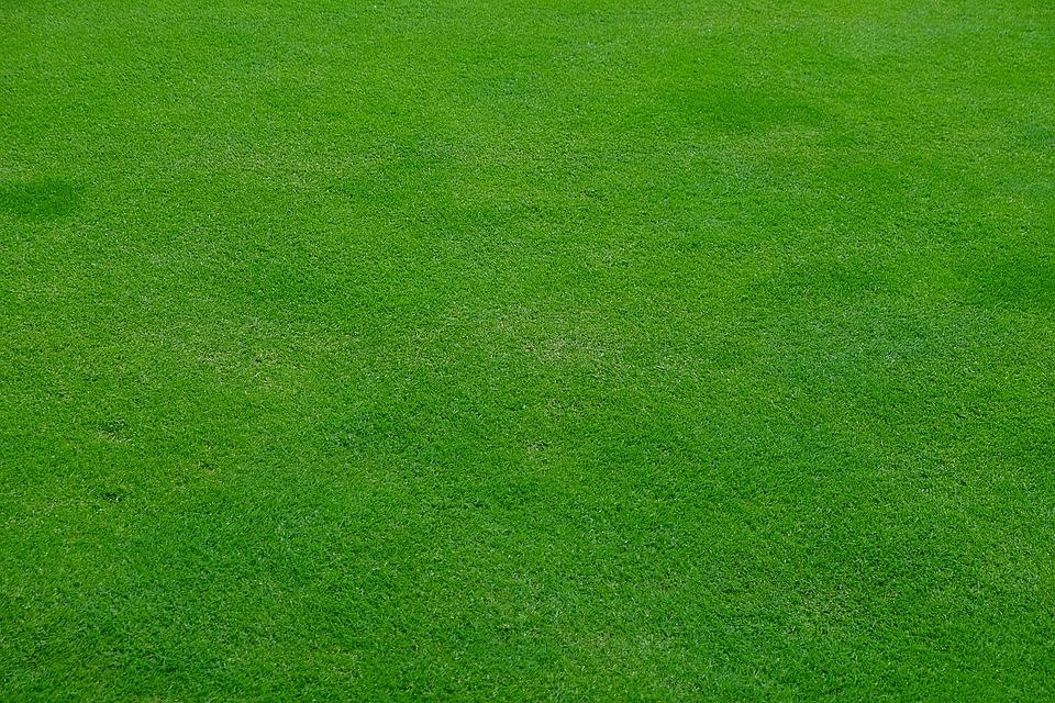 דשא סינטטי יתרונות וחסרונות